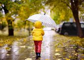Little Child Walking In The City Park At Rainy Autumn Day poster