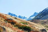 Autumn season in  Kackar Mountains in the Black Sea region of Turkey. Beautiful mountains landscape. poster