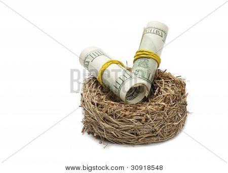 Money Rolls In Nest On White