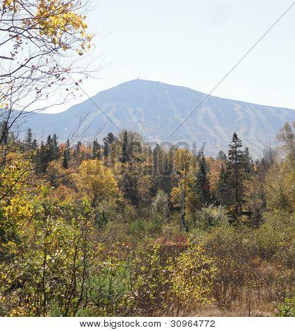 Sugarloaf in fall