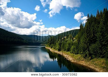 Landscape with a lake and trees