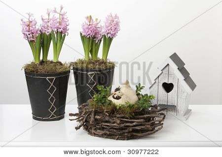 Spring Decoration With Hyacinths, Birdhouse And Chicken