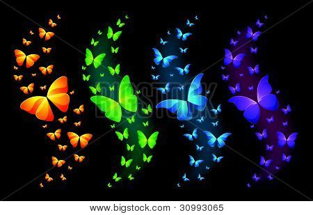 Vector Colorful Butterflies