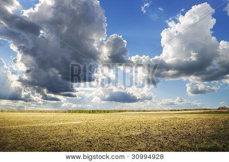 soil field