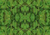 Digital Art Plants Collage Seamless Pattern poster