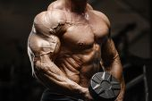 Muscular Bodybuilder Fitness Men Doing Arms Exercises In Gym poster