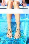 image of fish skin  - Fish Spa Rufa Garra pedicure treatment - JPG