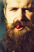 Handsome Sexy Bearded Young Man Hipster With Long Beard And Mustache Has Stylish Hair On Emotional H poster
