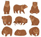 Cartoon Brown Bear. Grizzly Bears, Wild Nature Forest Predator Animals And Sitting Bear. Fur Brown P poster