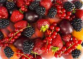 Mix Berries And Fruits On White Background. Ripe Blackberries, Strawberries, Red Currants, Plums And poster