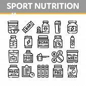 Sport Nutrition Cells Vector Thin Line Icons Set. Sport Nutrition For Sportsmen Linear Pictograms. D poster