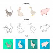 Vector Design Of Breeding And Kitchen Logo. Collection Of Breeding And Organic Vector Icon For Stock poster