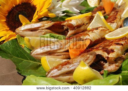 Tasty Pike Perch Fish
