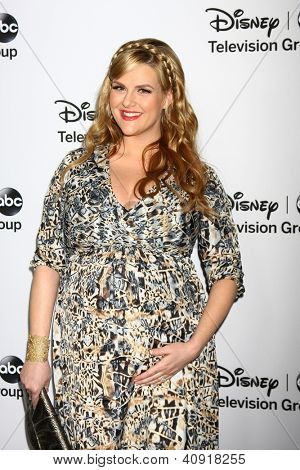 LOS ANGELES - JAN 10:  Sara Rue attends the ABC TCA Winter 2013 Party at Langham Huntington Hotel on January 10, 2013 in Pasadena, CA