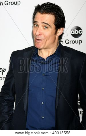 LOS ANGELES - JAN 10:  Goran Visnjic attends the ABC TCA Winter 2013 Party at Langham Huntington Hotel on January 10, 2013 in Pasadena, CA