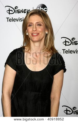 LOS ANGELES - JAN 10:  Helen Slater attends the ABC TCA Winter 2013 Party at Langham Huntington Hotel on January 10, 2013 in Pasadena, CA