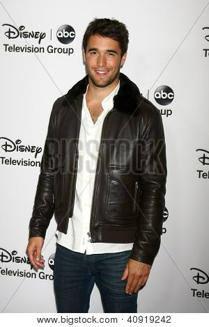 LOS ANGELES - JAN 10:  Josh Bowman attends the ABC TCA Winter 2013 Party at Langham Huntington Hotel on January 10, 2013 in Pasadena, CA