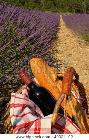 Picnic In The Lavender, Provence, France