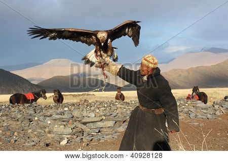Mongolia - 25 July: The Senior Mongolian Horseman In Traditional Clothing With Golden Eagles During