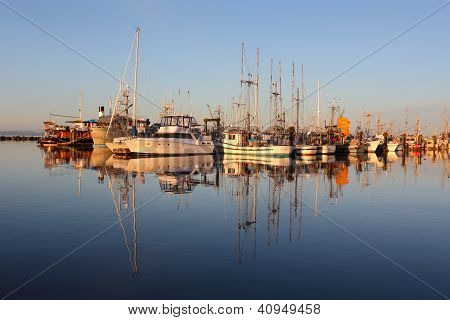 Marina Reflection, Steveston Morning
