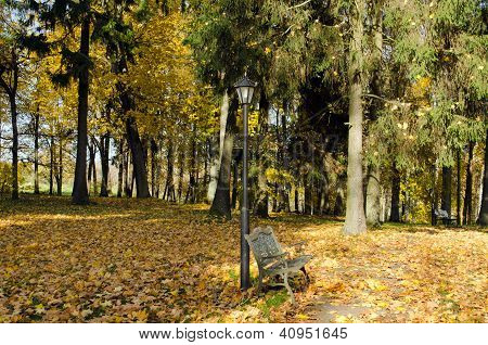 Lighting Pole Retro Bench Autumn Park Leaves