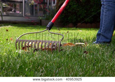 Lawn Work