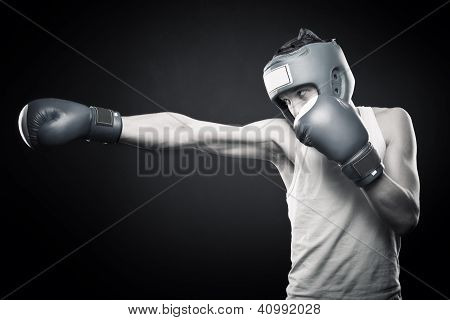 Strong Young Boxer