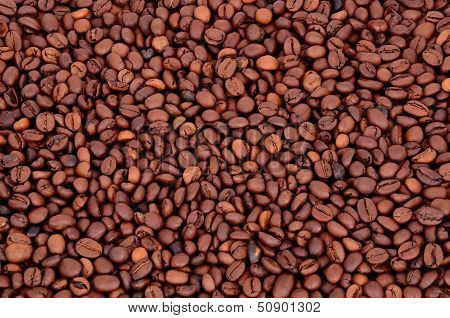 Coffee Beans On A Full Background