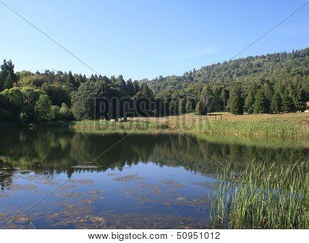 Doane Pond
