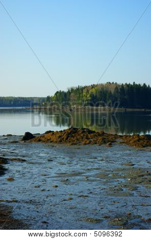 Carney Island In Little Deer Isle, Maine