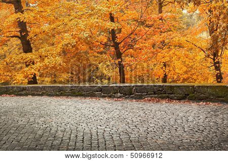 Autumn landscape with ancient road and beautiful colored trees