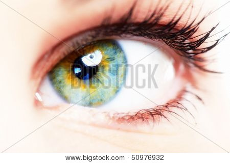 Beautiful Woman eye. Vision and optometry background.