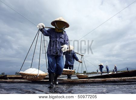 Salt worker working on saline