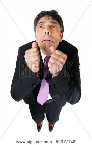 Comic high angle portrait of a middle-aged businessman with a scared fearful expression raising his fists to his face as though beseeching help, isolated on white