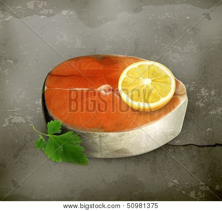 Fish steak with seasoning old style vector
