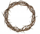 stock photo of crucifixion  - A top view of branches of thorns woven into a crown depicting the crucifixion on an isolated background - JPG