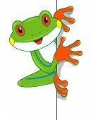 foto of cute frog  - Illustration of a Cute Tree Frog Looking Curiously at the Screen - JPG
