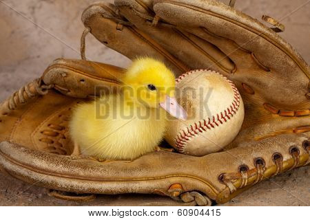 Old weathered baseball glove with a cute yellow easter duckling