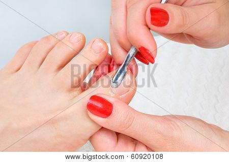 body care series. pedicure applying - toe nails cleaning and moisturizing with special solution.