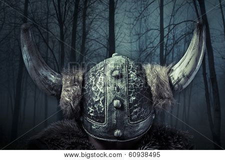 Helmet, Viking warrior, male dressed in Barbarian style with sword, bearded
