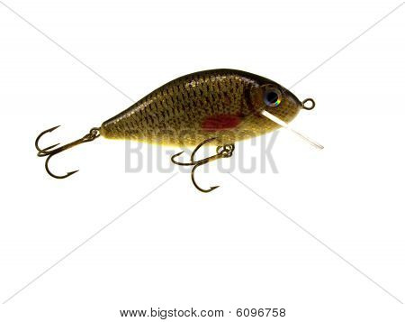 Old Fishing Wobbler A Crucian