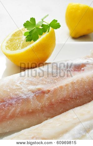 closeup of a plate with some frozen hake fillets