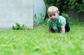 Baby boy crawling on the grass