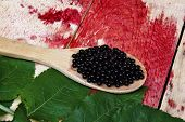 image of elderberry  - Fresh fruit healthy black elderberry wooden spoon