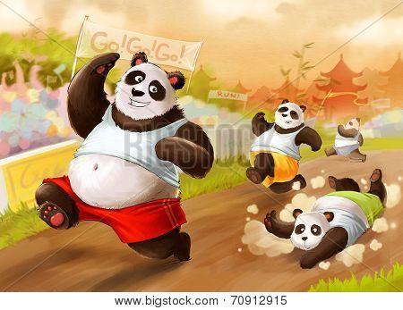 Pandas compeating