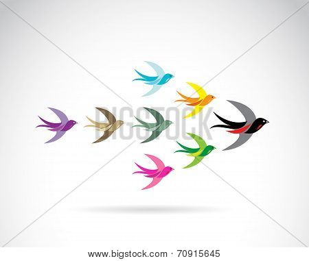 Vector Group of colorful swallow birds.