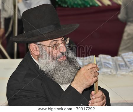 BNEY-BRAK, ISRAEL - SEPTEMBER 17, 2013: Big market on the eve of the Jewish holiday of Sukkot. The  elderly man with gray-haired beard and in hat chooses a myrtle
