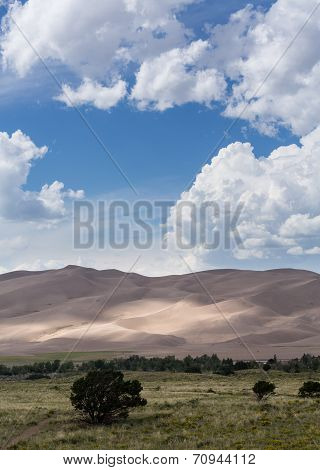 People On Great Sand Dunes Np