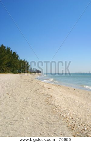 Serene Beach Vertical