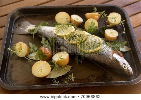 Raw Vegetables And Trout